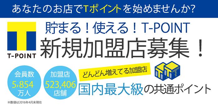 t_point01